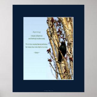 SPRING Starling Poem & Art Poster
