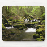 Spring Stream Mouse Mats