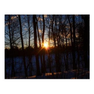 Spring Street Sunrise Postcard