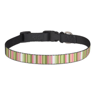 Spring Stripes Dog Collar