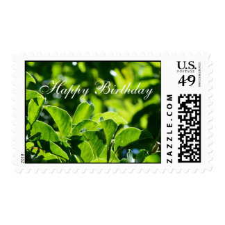 Spring, summer green leaves happy birthday stamps. postage