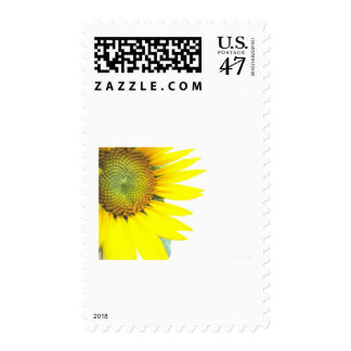Spring sunflowers postage