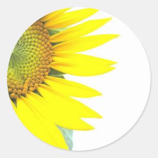 Spring sunflowers round stickers