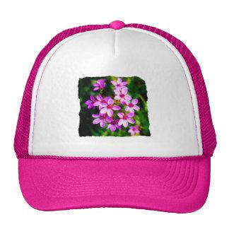 Spring Sweetness Mesh Hat