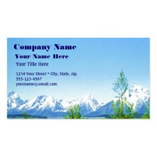 Spring Tetons VISION business card