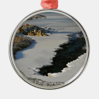 Spring Thaw5 Metal Ornament