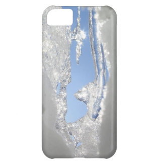 Spring Thaw iPhone 5C Cover