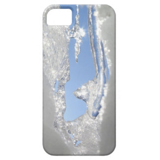 Spring Thaw iPhone SE/5/5s Case