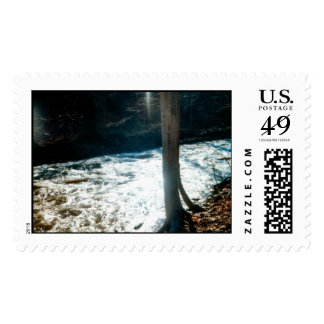 Spring Thaw Postage Stamp