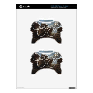 Spring (The Earthly Paradise) by Nicolas Poussin Xbox 360 Controller Skins