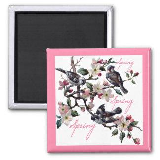 Spring Time Apple Blossom Birds 2 Inch Square Magnet