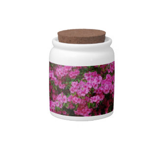 Spring Time Azaelas Candy Jars