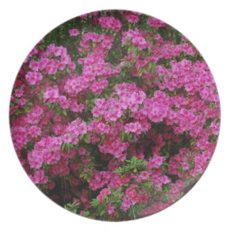 Spring Time Azaelas Melamine Plate