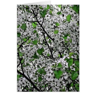 """""""SPRING TIME BLOSSOMS ON TREE (WHITE/GREEN) CARD"""