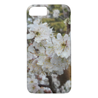 Spring Time Cherry Blossoms iPhone 7 Case