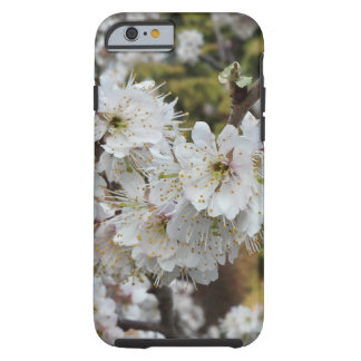 Spring Time Cherry Blossoms Tough iPhone 6 Case