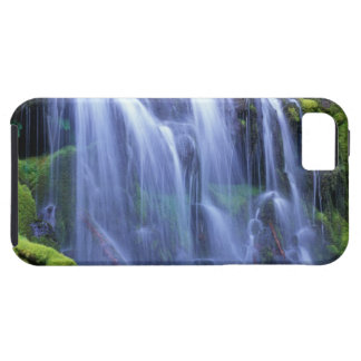 Spring-time fresh water flowing over moss iPhone SE/5/5s case