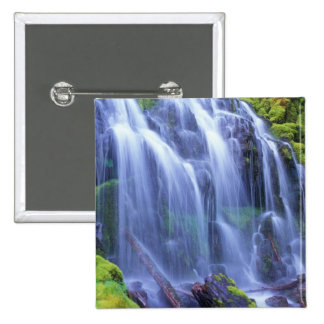 Spring-time fresh water flowing over moss pinback button