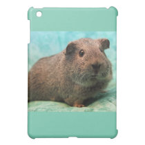Spring Time Guinea Pig iPad Case