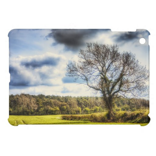 Spring Time in the Countryside iPad Mini Cases