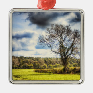Spring Time in the Countryside Metal Ornament