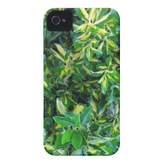 Spring Time iPhone 4 Case