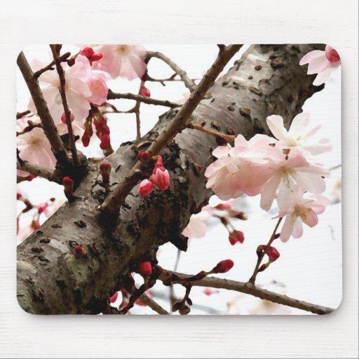 Spring Time Mousepad