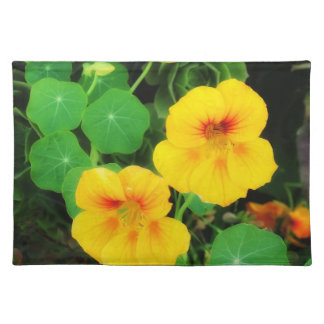 Spring Time Placematt Placemat