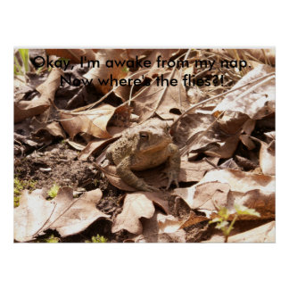 Spring Toad a Poster