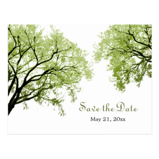 Spring Trees 2 - Save the Date Postcard