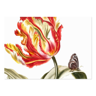 Spring Tulip Butterfly Floral Alternative Health Business Cards