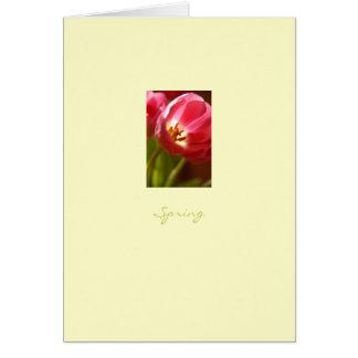Spring Tulip Card