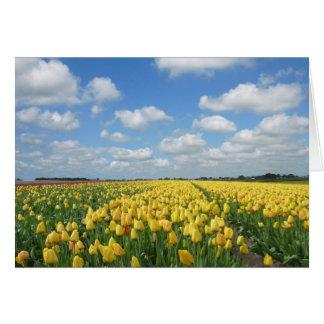 Spring Tulip Festival Landscape Card