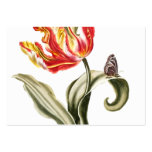 Spring Tulip Floral Large Business Cards (Pack Of 100)