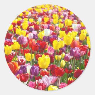 Spring Tulip Flowers Garden stickers Tulips