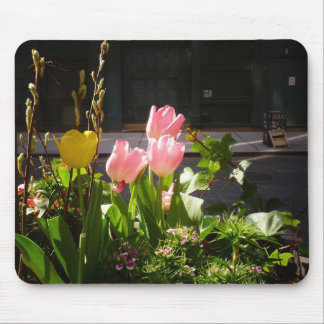 Spring Tulips Against A Street in Soho Mouse Pad