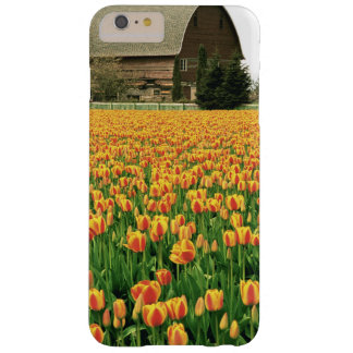 Spring tulips bloom in front of old barn. barely there iPhone 6 plus case