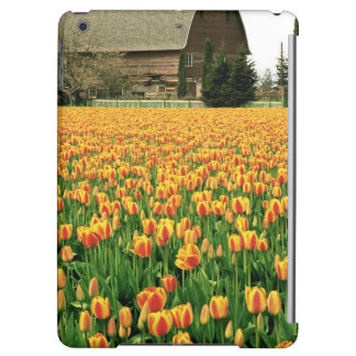 Spring tulips bloom in front of old barn. case for iPad air