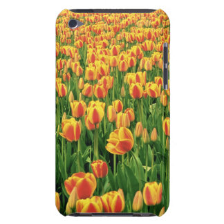 Spring tulips bloom in front of old barn. Case-Mate iPod touch case