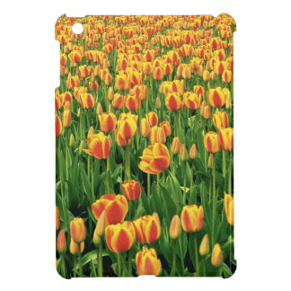 Spring tulips bloom in front of old barn. iPad mini case