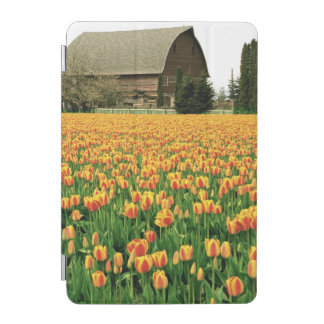 Spring tulips bloom in front of old barn. iPad mini cover