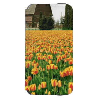 Spring tulips bloom in front of old barn. iPhone 6/6s wallet case