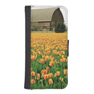 Spring tulips bloom in front of old barn. phone wallet case