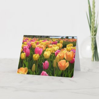 Spring Tulips card