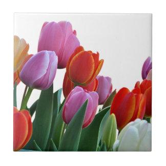 Spring Tulips Ceramic Tile