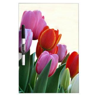 Spring Tulips Dry-Erase Board