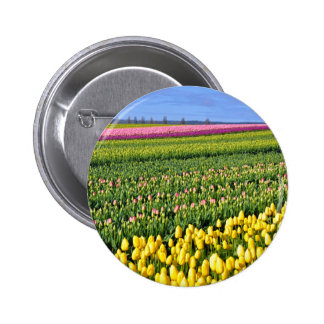 Spring tulips field pinback button