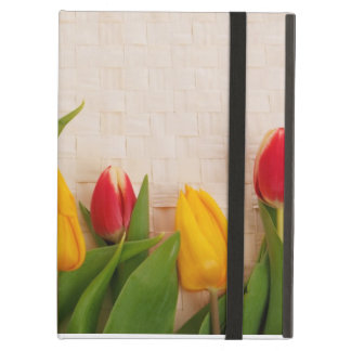Spring Tulips iPad Cover