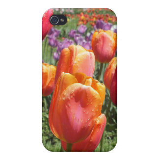 Spring Tulips iPhone 4 Savvy Case