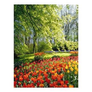 Spring Tulips Custom Letterhead